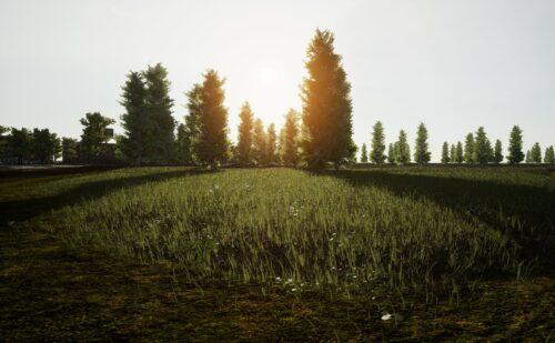 ancien environnement